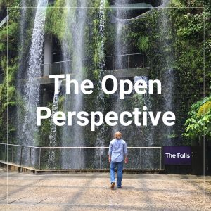 The Open Perspective